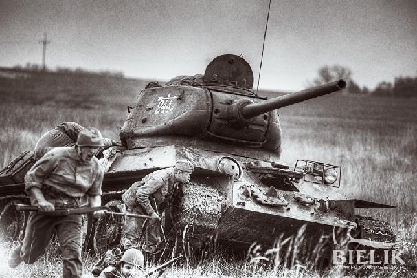 Bitwa o Szczecin (insenizacja)